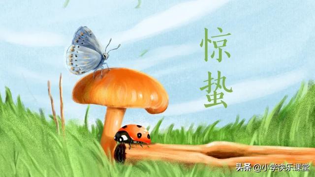 昆虫记手抄报内容简介
