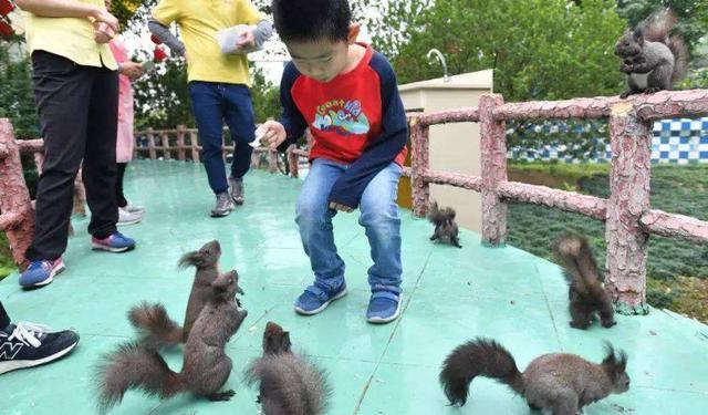 你给的并不全是孩子想要的,这4种教育方式,才是中国孩子需要的