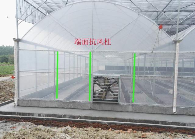 这种大棚不仅实用,而且造价经济,生产型温室首选