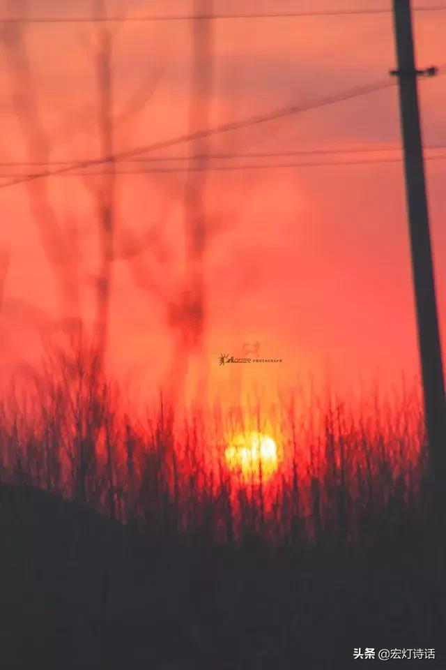 东荡子的诗,过目难忘诗歌 | 第41期:西川 《一个人老了》