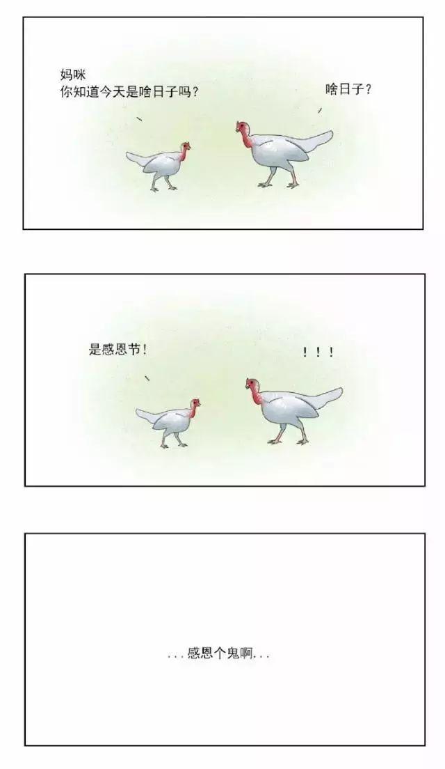 萌漫画:  感恩节快乐
