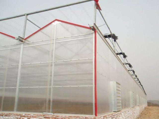 北方地区为什么纹络型温室大棚喜欢用阳光板的顶子