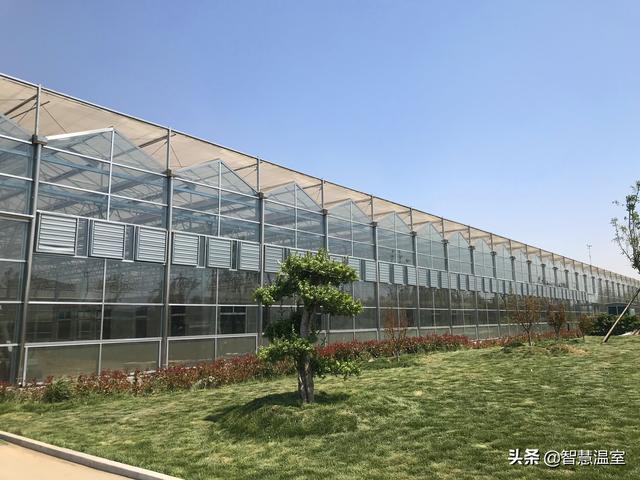 一套常规玻璃温室大棚设计方案
