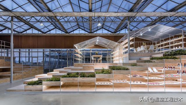 如何建造一座标准的智能玻璃温室大棚,专家参考手册