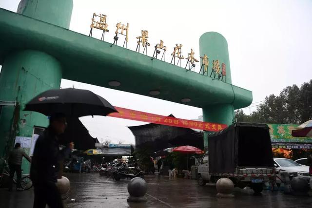 温州黄龙商贸城附近哪里有卖花的_易发生活网