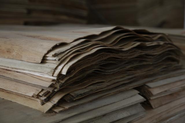龙赞产业园:发展林木循环经济,打造国际产能合作示范区