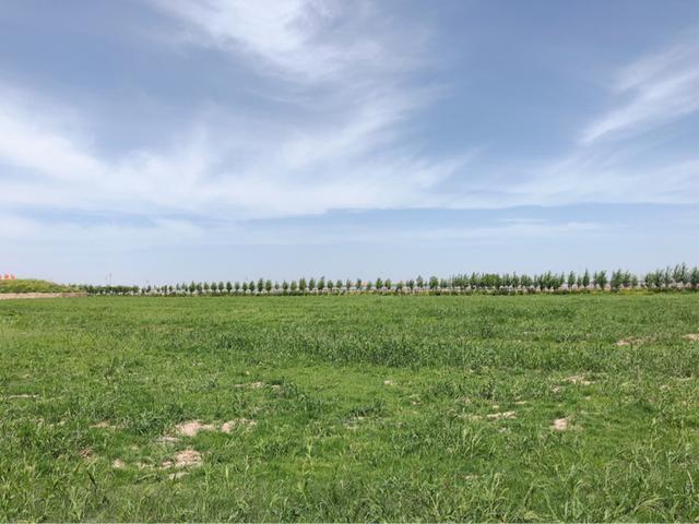 内蒙古最好玩是哪里