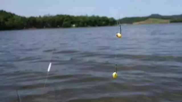 钓草鱼怎么打窝 方法很简单,打窝后草鱼疯狂进窝!_伊秀经验