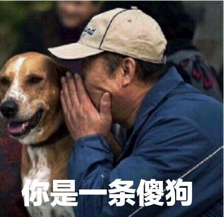 傻叼狗表情包
