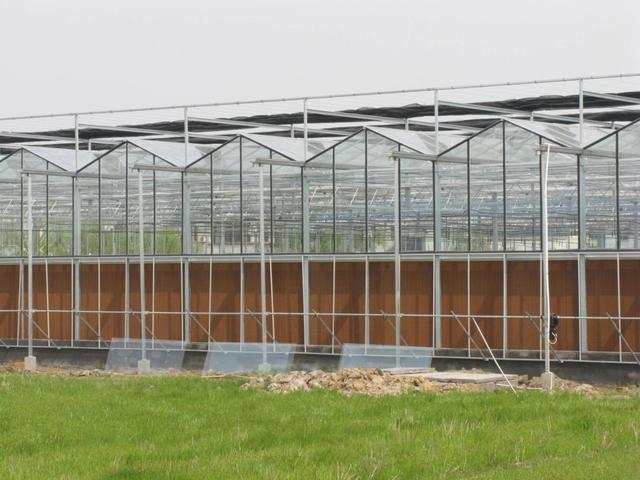 连栋温室大棚设计方案及预算