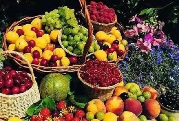新疆干果50种干果种类大全图片