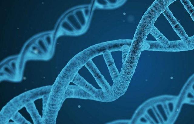 最常见的遗传病_这2个情况最容易隔代遗传,尤其会传给男孩子,家长要注意 ...