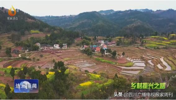 大竹县童家镇天星寨村第二小组农村产权转让成... - 千里马招标网