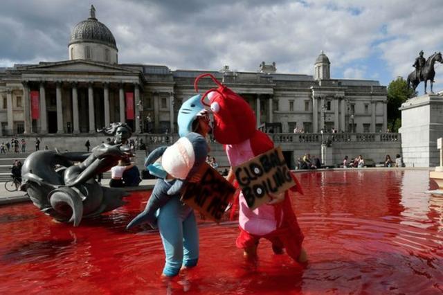 """素食者们把伦敦喷泉染成一滩""""鲜血"""",炮轰政府:不吃肉就没疫情"""