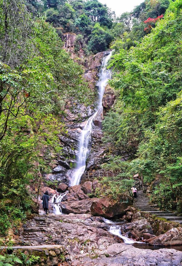 广西这个景区,不仅拥有美丽的瀑布,更能在这里享受有趣的夜晚斗战圣狗 经济