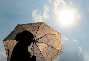 世界气象组织预报2019年可能成为有史以来最热的第5个年份