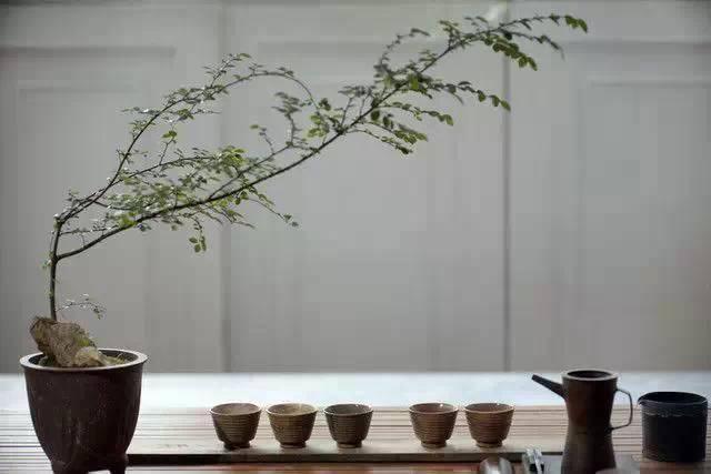 中国式的雅致生活