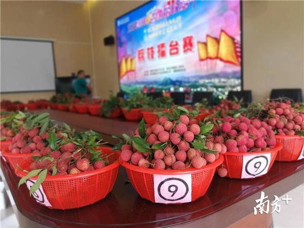三门坡荔枝镇图片