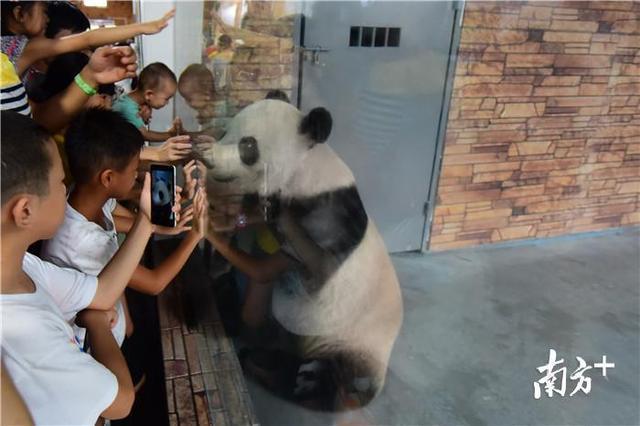 香市动物园电话