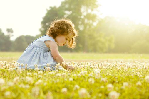 春天到了,花粉过敏高发!这样做,有效防治一把鼻涕一把泪!