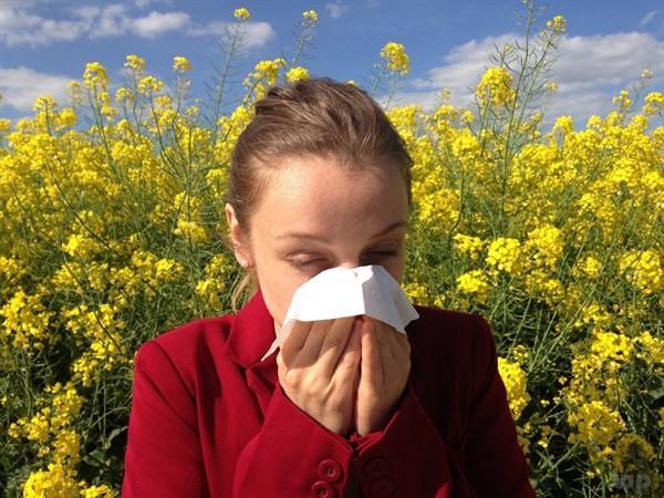 全国花粉过敏预报出炉!看哪里鼻涕眼泪流不停