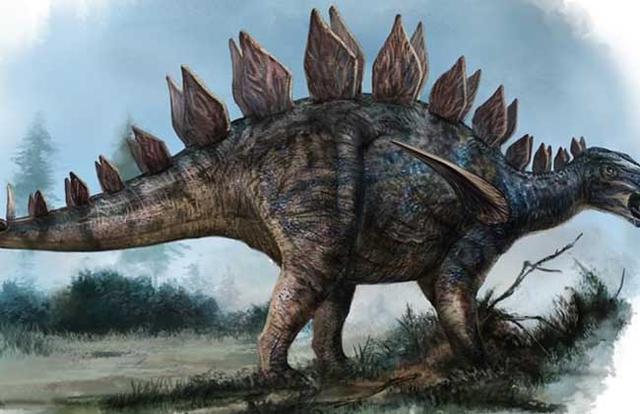 恐龙的种类图片大全-第8张图片-IT新视野