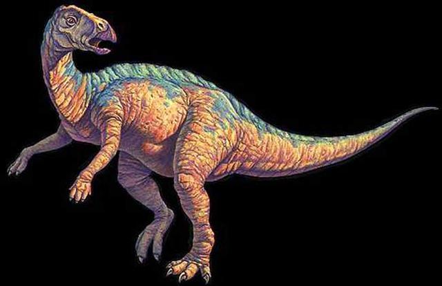 恐龙的种类图片大全-第10张图片-IT新视野