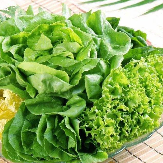 回奶的八种蔬菜