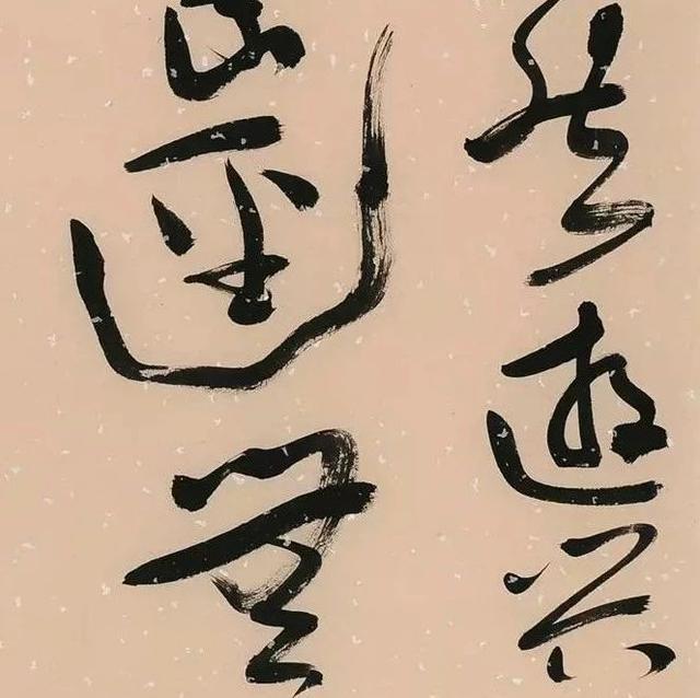 中国书法家协会草书委员会委员作品欣赏