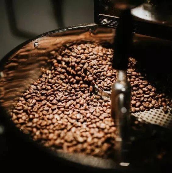 CHAPTER 8:你所不知道的Coffee派系—原产地咖啡与烘焙