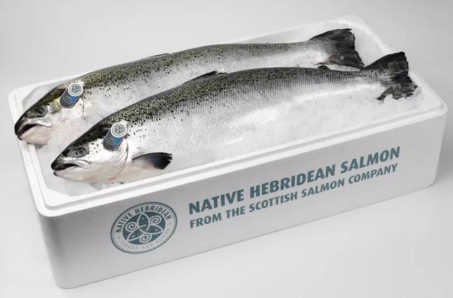 """挪威又""""作妖""""了,这两年我国从挪威进口三文鱼的情况到底如何?"""