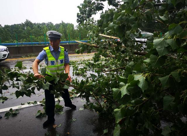 河南高速交警全警上路护航保畅 端午假期全省高速公路总体平稳
