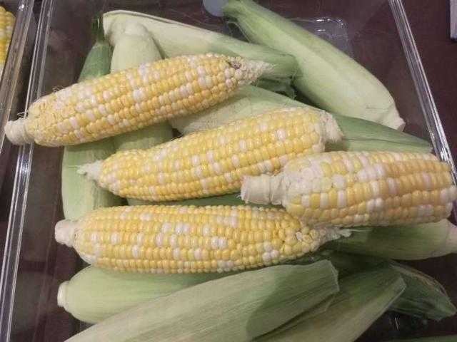 沪产鲜食玉米进入当令销售季,首次评优活动今天举行!猜猜哪个品种获金奖?
