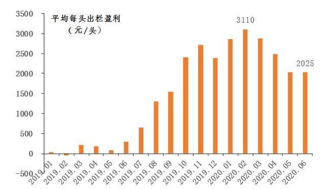 2020年上半年广东省生猪产销形势分析