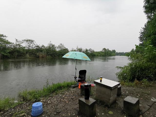 5.4米龙纹鲤三代,假期钓获近19斤大草鱼