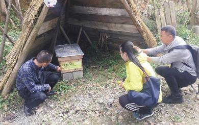 龙头带动产业融合蜂产业助力精准扶贫