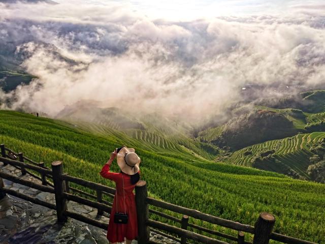 龙胜龙脊梯田景区图片