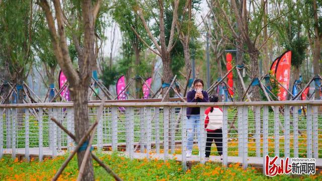 邯郸市月爱湖公园