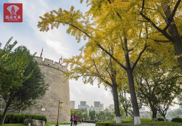 西安樊川公园景点图片