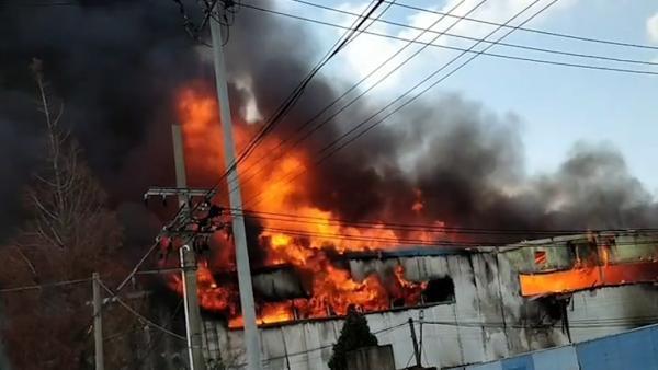 四川凉山森林大火事件