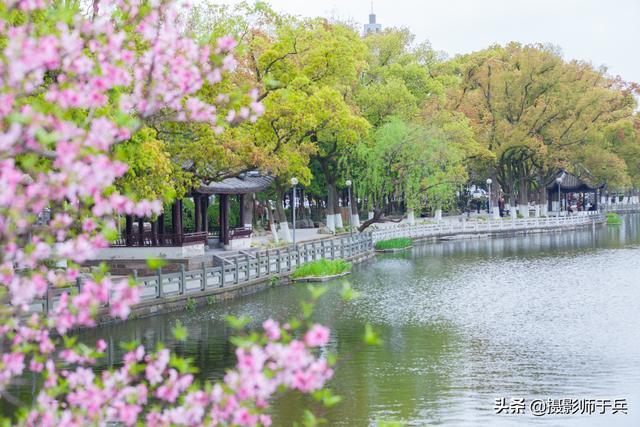 浙江宁波市月湖景区,环境超赞,不愧为5A景区,值得大家游玩。