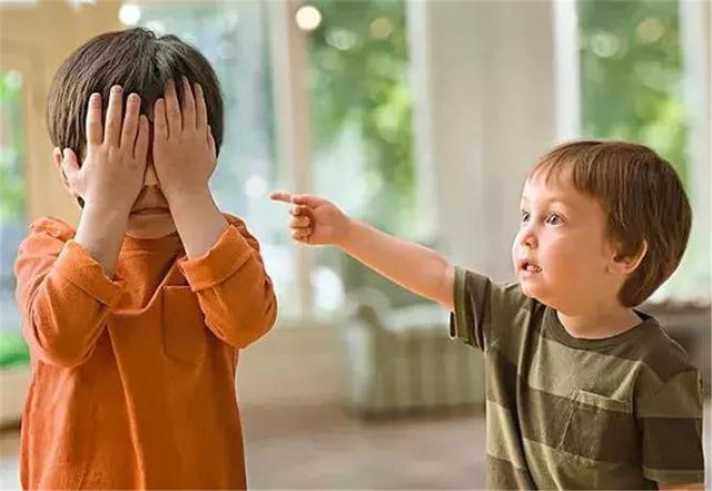 白岩松:情商比智商更重要,家长常说这4句话,孩子情商低不了