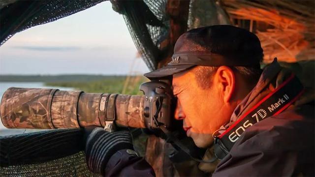 湿地摄影师联合呼吁:保护候鸟!控制疫情!刻不容缓