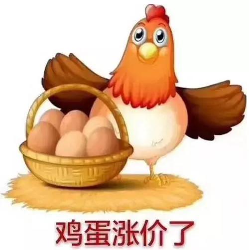 鸡蛋价格涨起来了!7月涨幅高达57%!好行情还能继续多久?