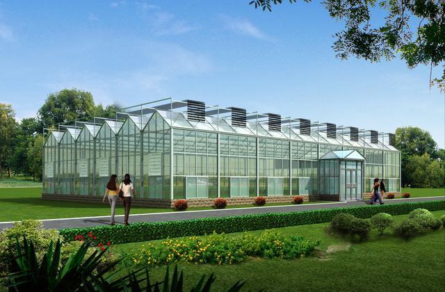 小型玻璃温室大棚如何设计建造?一亩地的玻璃温室大棚多少钱