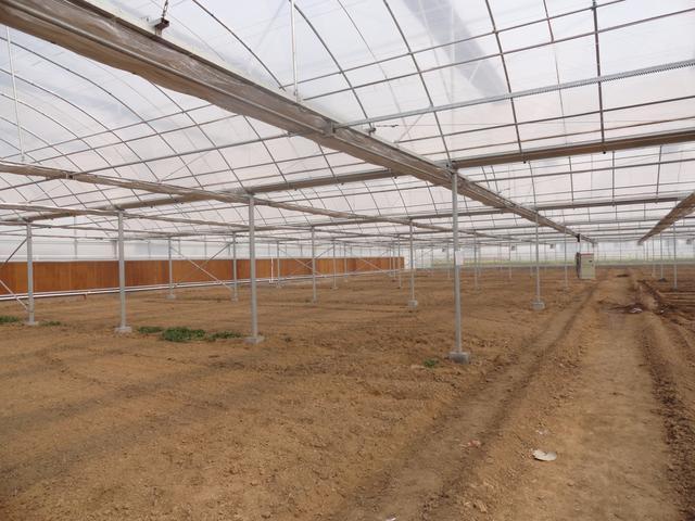 南阳市南召县9栋新型节能日光温室大棚样板图