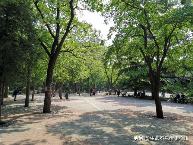 北京东单男生聚集地