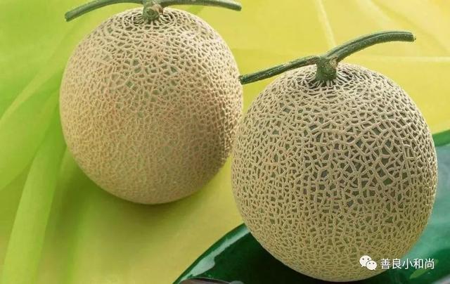 名字中带有瓜的三种水果,如果没猜错,你就只想到了西瓜!_腾讯网