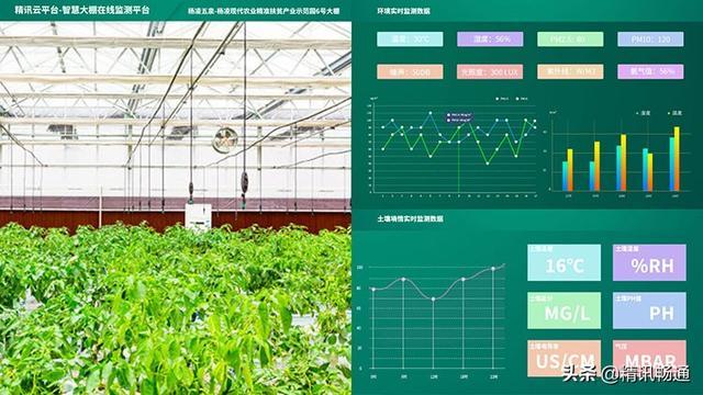 智慧农业大棚物联网解决方案-农业物联网-智慧大棚解决方案