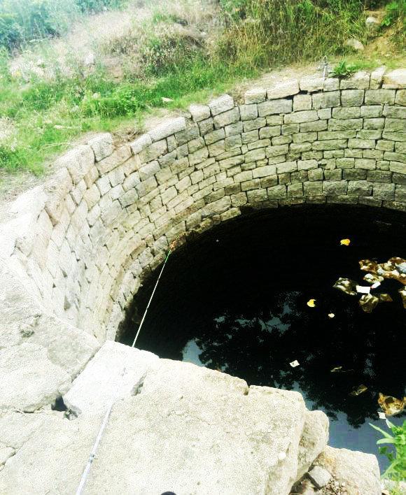 这鱼能吃?二十米深老井里钓起来的鱼全身黝黑,养一会变白